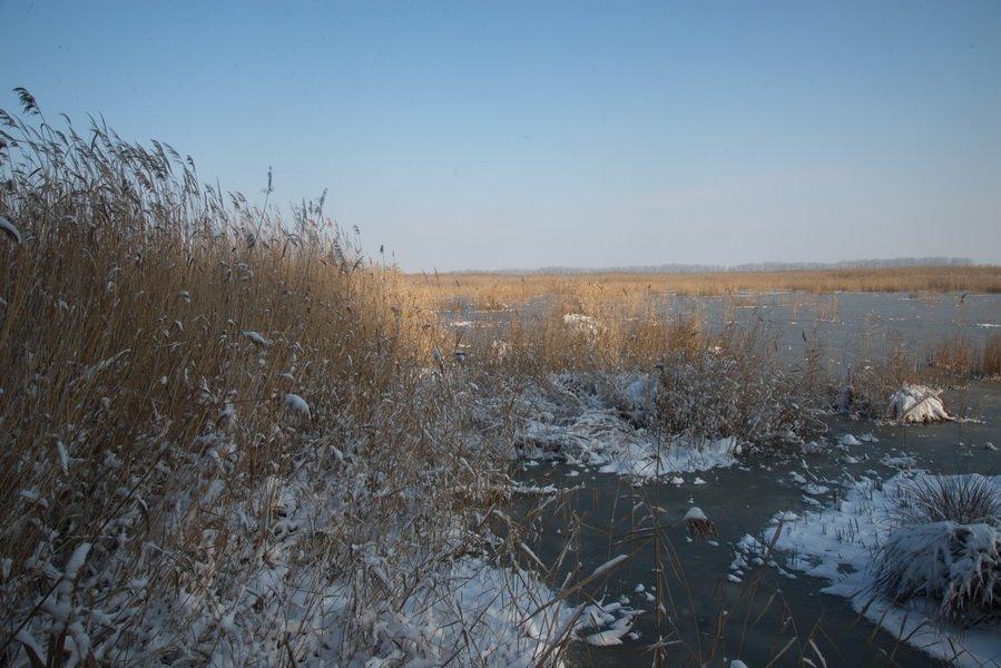 Téli túra a Kolon tónál | Kiskunsági Nemzeti Park